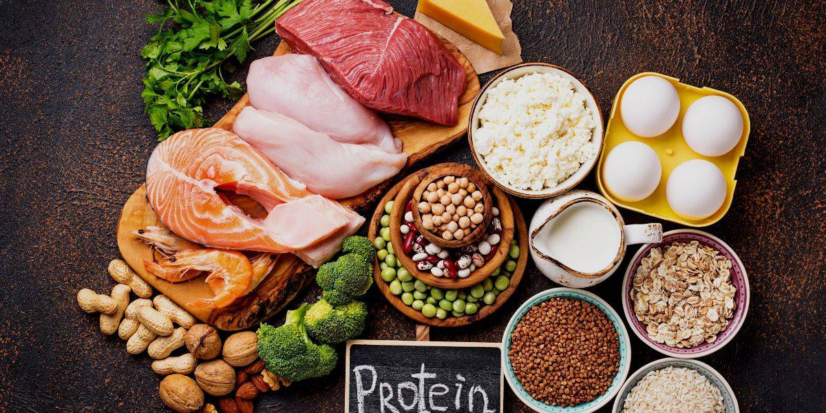36 High Protein Foods You should be Eating