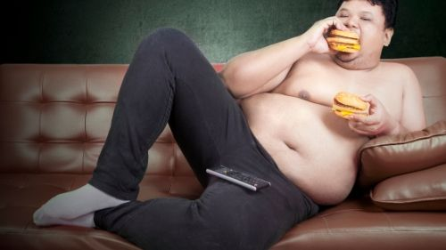 what causes belly fat